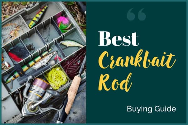 Best Crankbait Rod Buying Guide