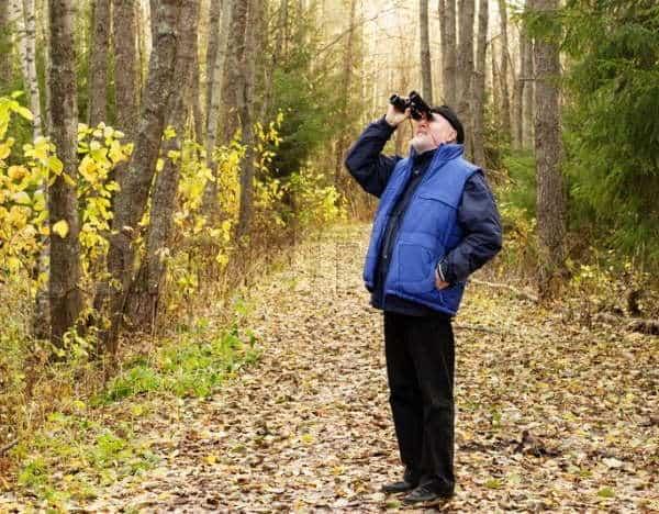 Best Binocular for Bird Watching
